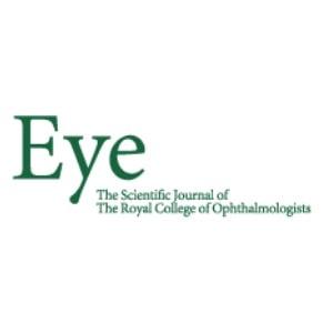 Eye journal 1